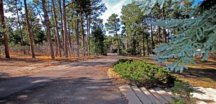 Exclusive Woodmoor Hills!