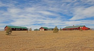 Beautiful Custom Ranch on 20 Acres!