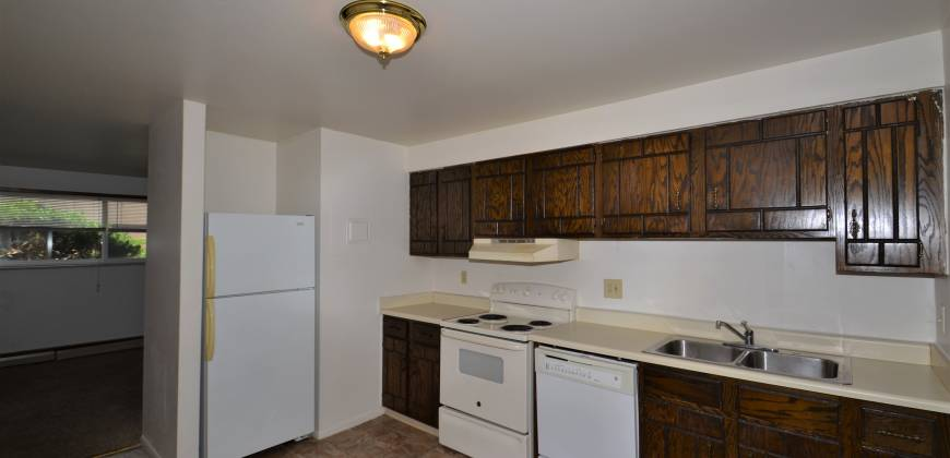 2 Bedroom Apartment Available Now (Forrest Hills)
