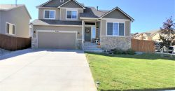 Gorgeous 4 Level Home in the Painted Sky Commuity
