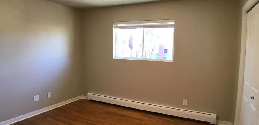 Beautifully updated Apartment #8