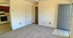 Cozy and Spacious Rancher home in Pikes Peak Park