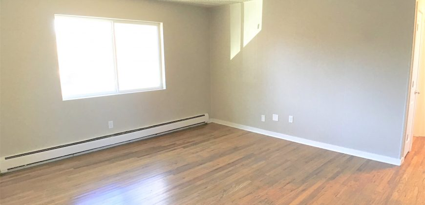 Spacious Remodeled Apartment