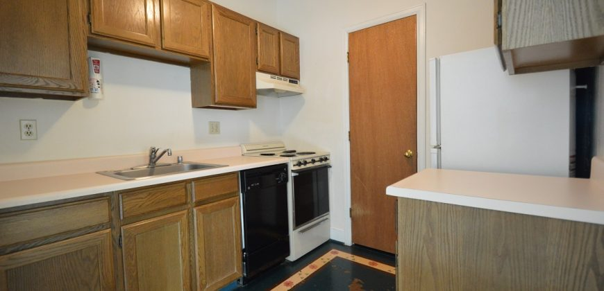Downtown Apartment with Walk-in Closet
