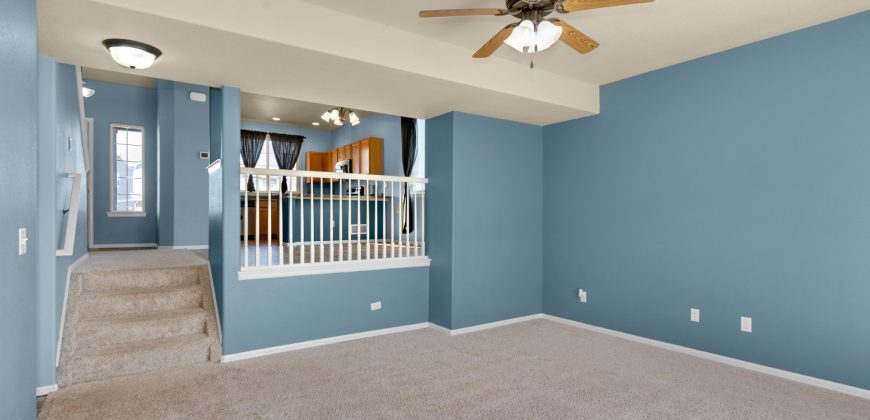 Beautiful 4-Level Home in the Painted Sky Community